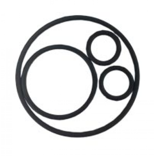 O ring & Gaskets