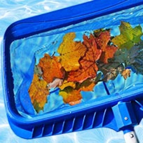 Pool Maintenance & Accessories